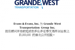 Chinese Public Listings and Financings